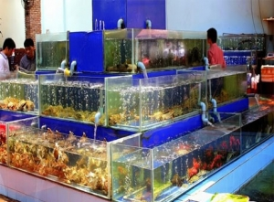 Cung cấp thiết bị bếp cho nhà hàng hải sản Khói Seafood