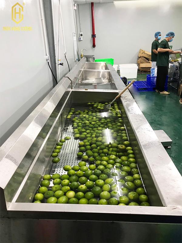 cung cấp máy rửa rau của quả inox